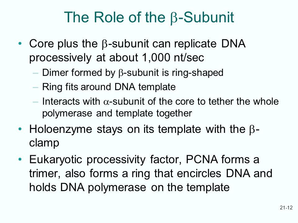 The Role of the b-Subunit