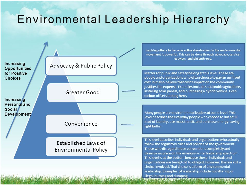 Youth Can Be Environmental Educators Too - ppt video ...
