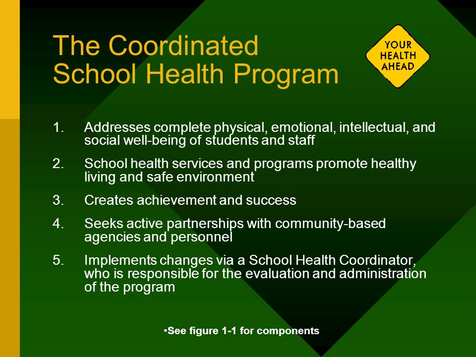 The Coordinated School Health Program