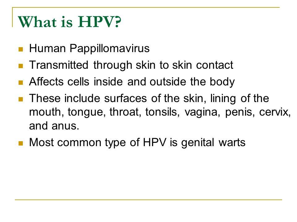 What is HPV Human Pappillomavirus