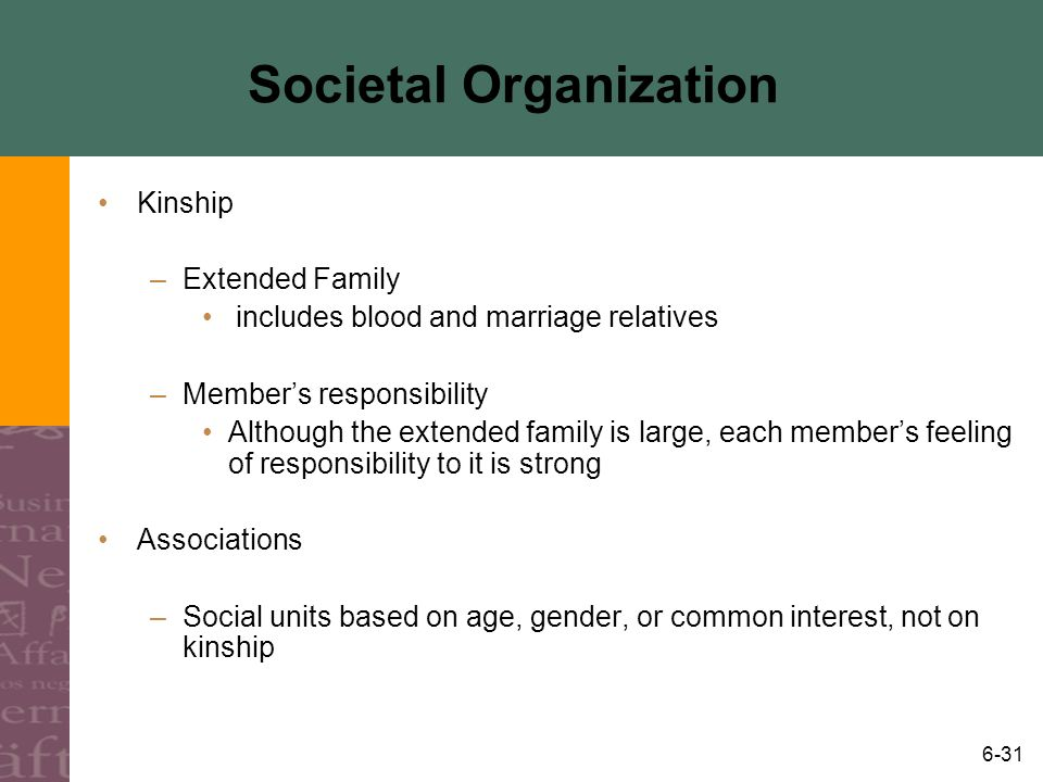 Societal Organization