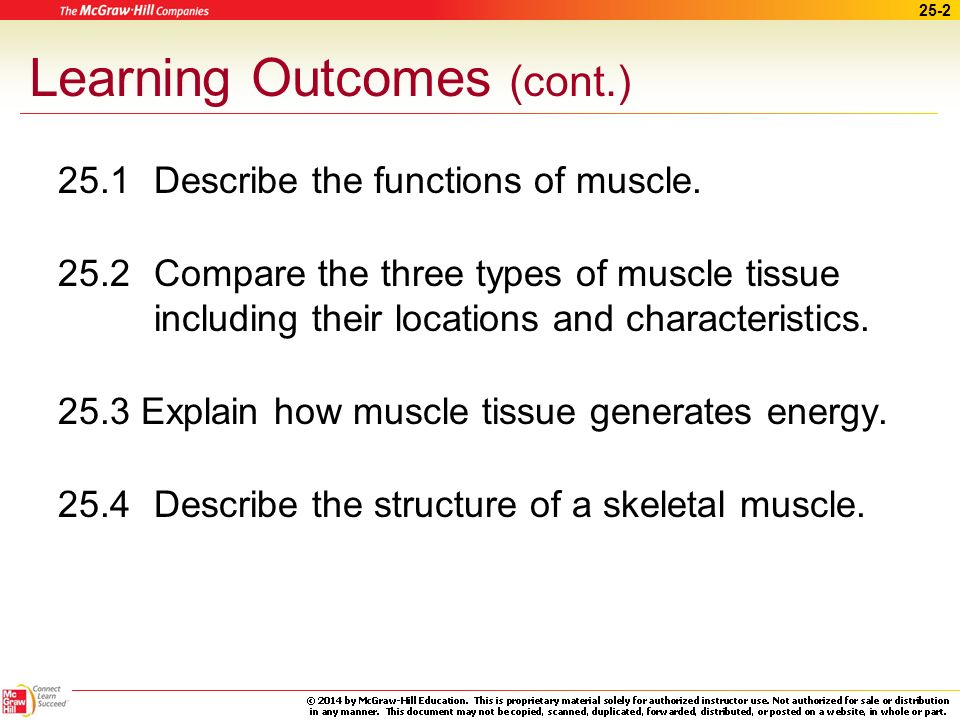 25 the muscular system. - ppt download, Muscles