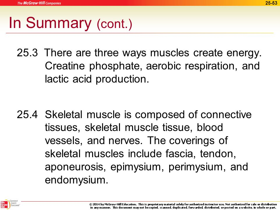 In Summary (cont.) 25.3 There are three ways muscles create energy. Creatine phosphate, aerobic respiration, and lactic acid production.