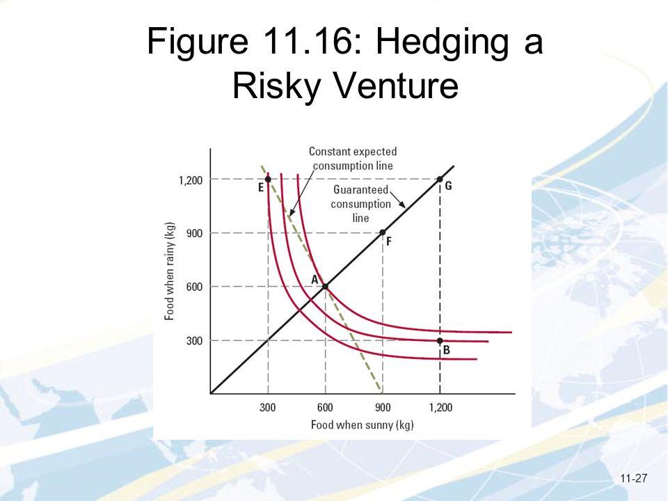 Figure 11.16: Hedging a Risky Venture