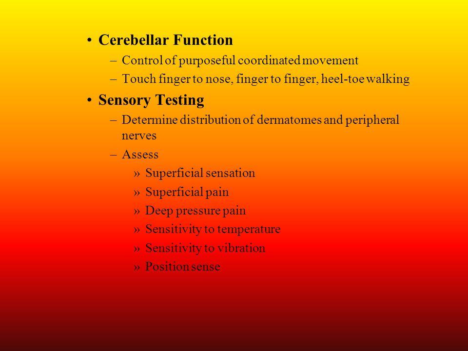 Cerebellar Function Sensory Testing