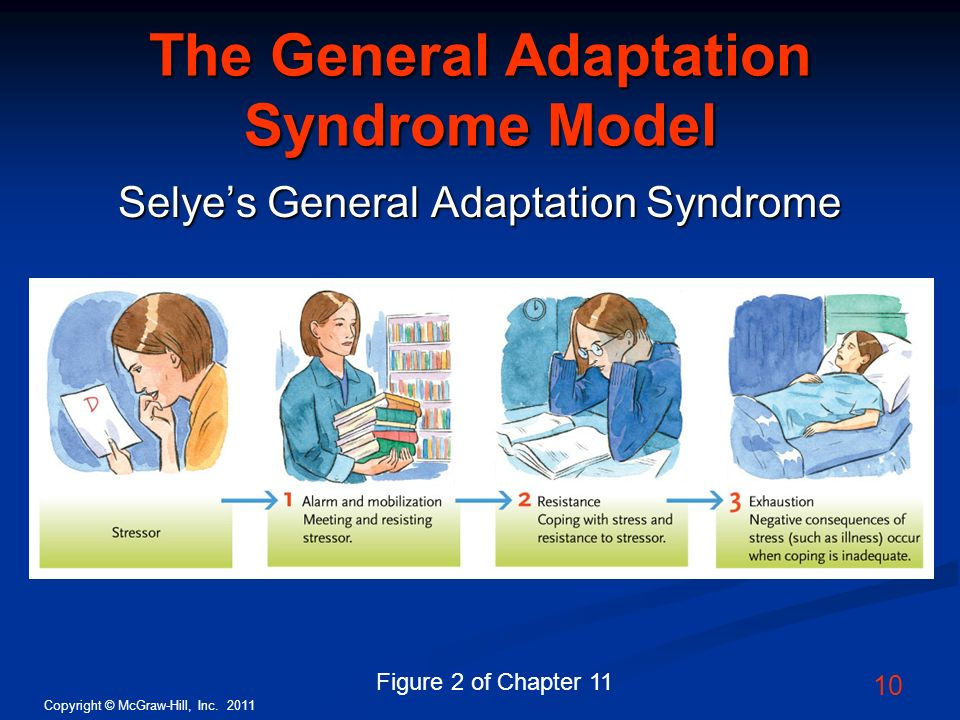 The General Adaptation Syndrome Model