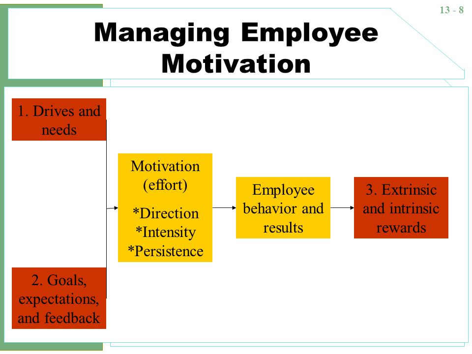Managing Employee Motivation