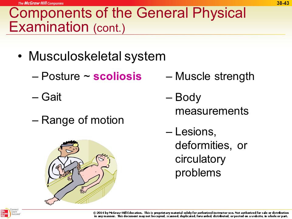Components of the General Physical Examination (cont.)
