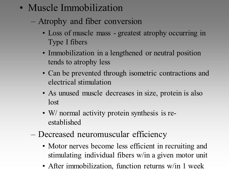 Muscle Immobilization