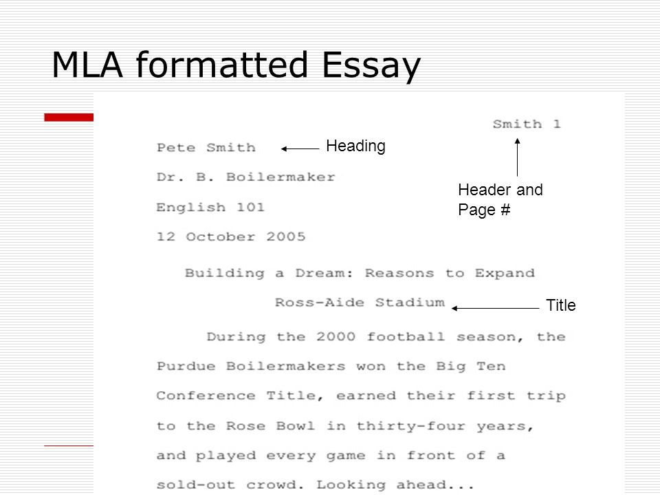 correct mla heading for essay research paper sample