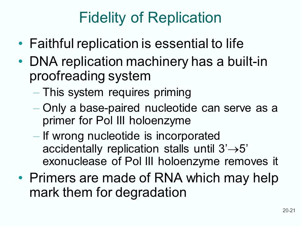 Fidelity of Replication