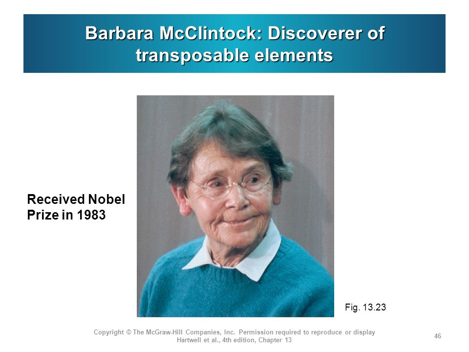 Barbara McClintock: Discoverer of transposable elements