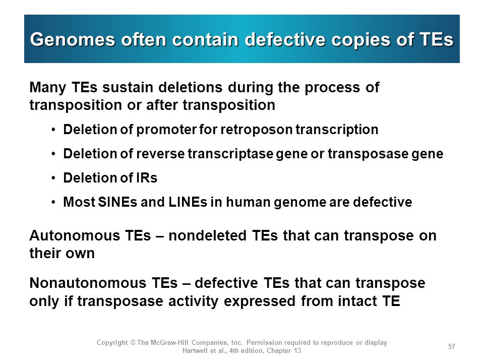 Genomes often contain defective copies of TEs