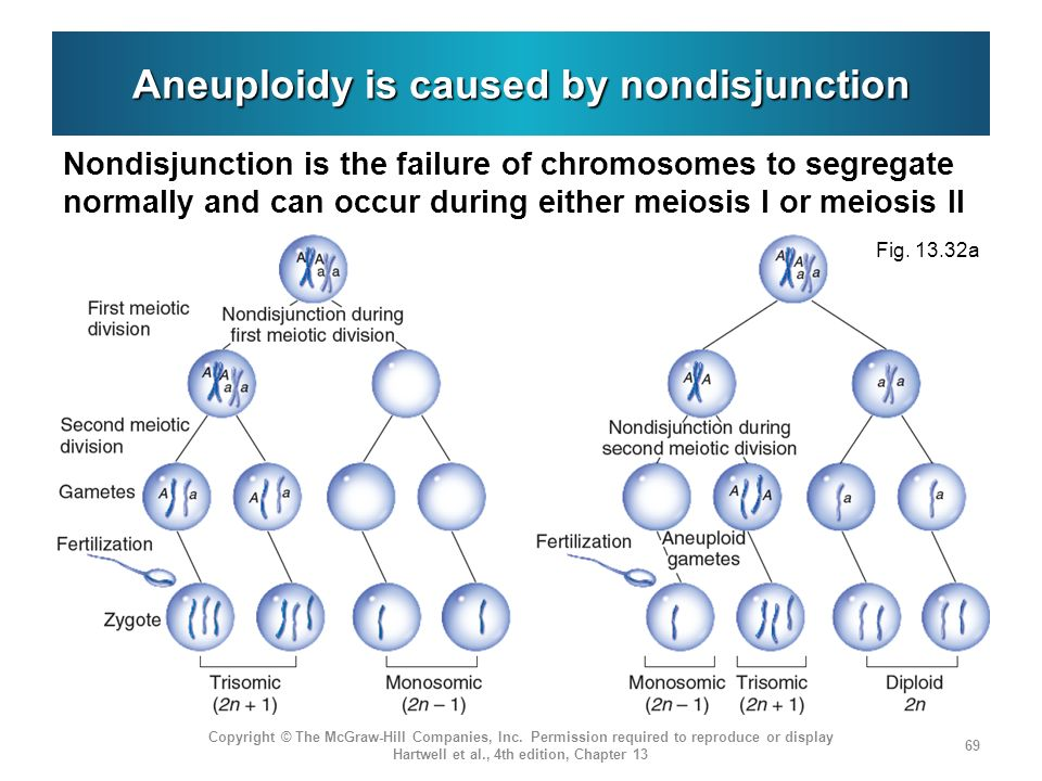 Aneuploidy is caused by nondisjunction