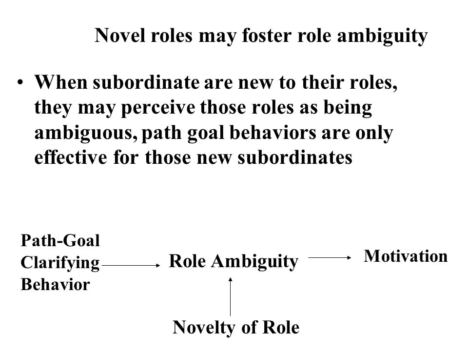 Novel roles may foster role ambiguity