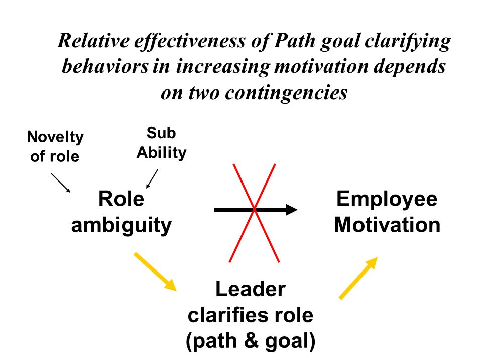 Leader clarifies role (path & goal)