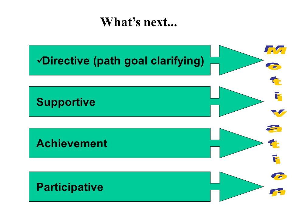 What's next... Directive (path goal clarifying) Motivation Supportive