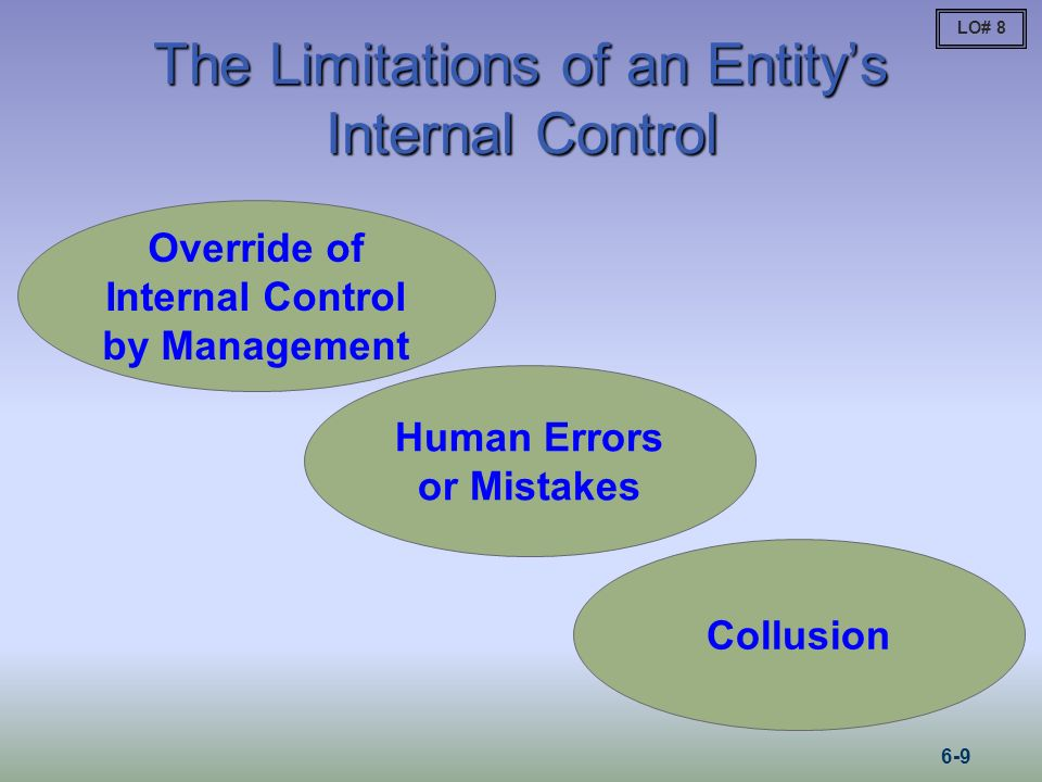 The Limitations of an Entity's Internal Control