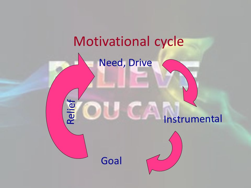 Motivational cycle Need, Drive Relief Instrumental Goal