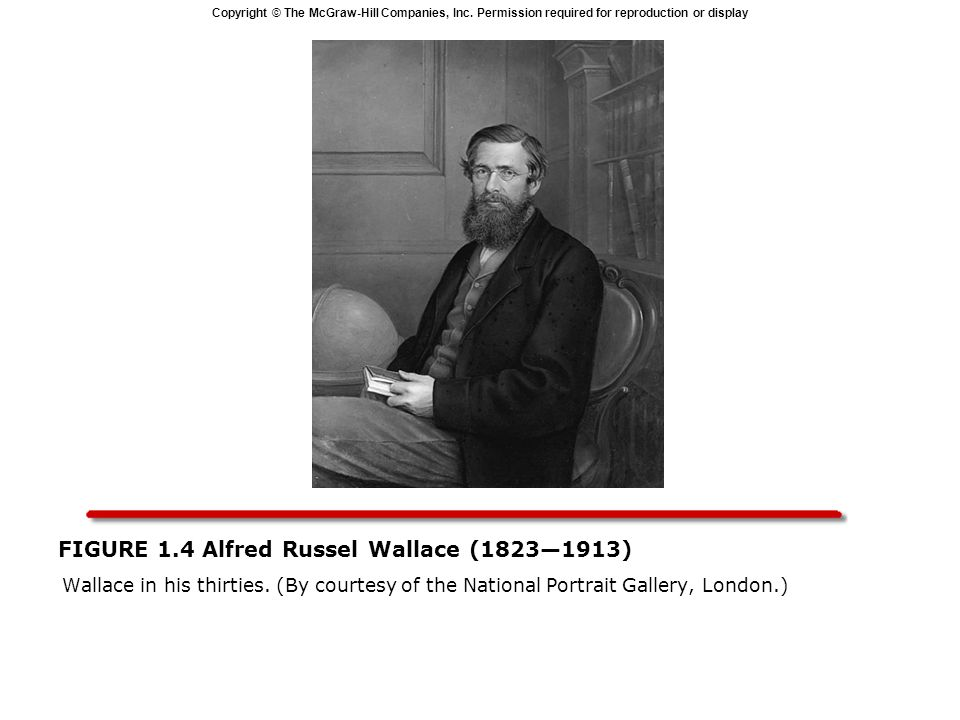 FIGURE 1.4 Alfred Russel Wallace (1823—1913)
