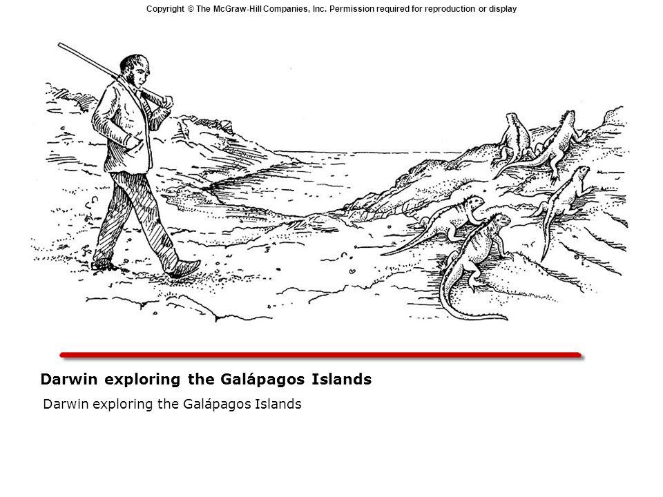 Darwin exploring the Galápagos Islands