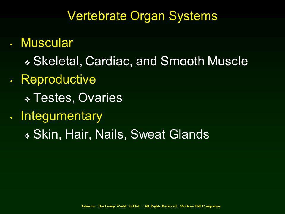 Vertebrate Organ Systems