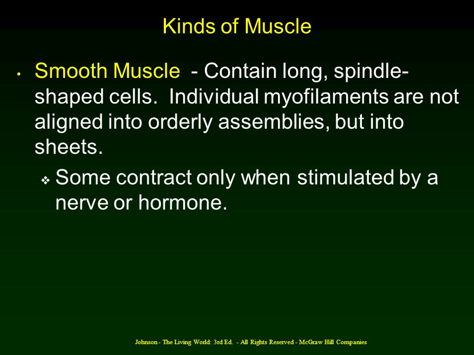 Some contract only when stimulated by a nerve or hormone.