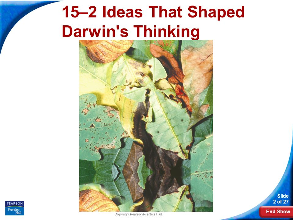 15–2 Ideas That Shaped Darwin s Thinking