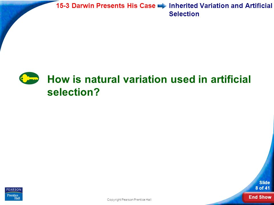 Inherited Variation and Artificial Selection
