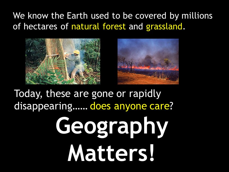 We know the Earth used to be covered by millions of hectares of natural forest and grassland.