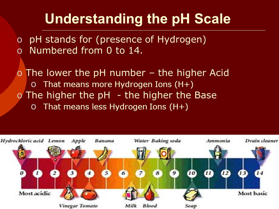 Understanding the pH Scale