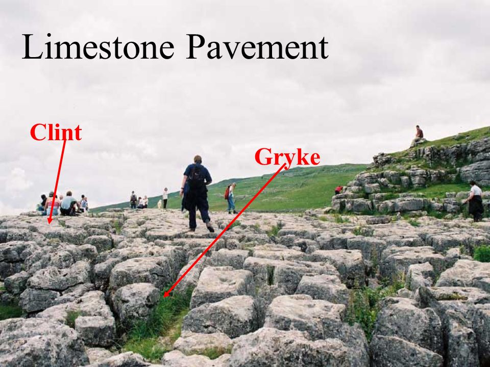 Limestone Pavement Clint Gryke