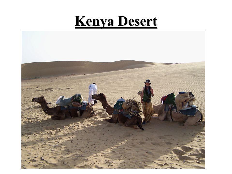 Kenya Desert
