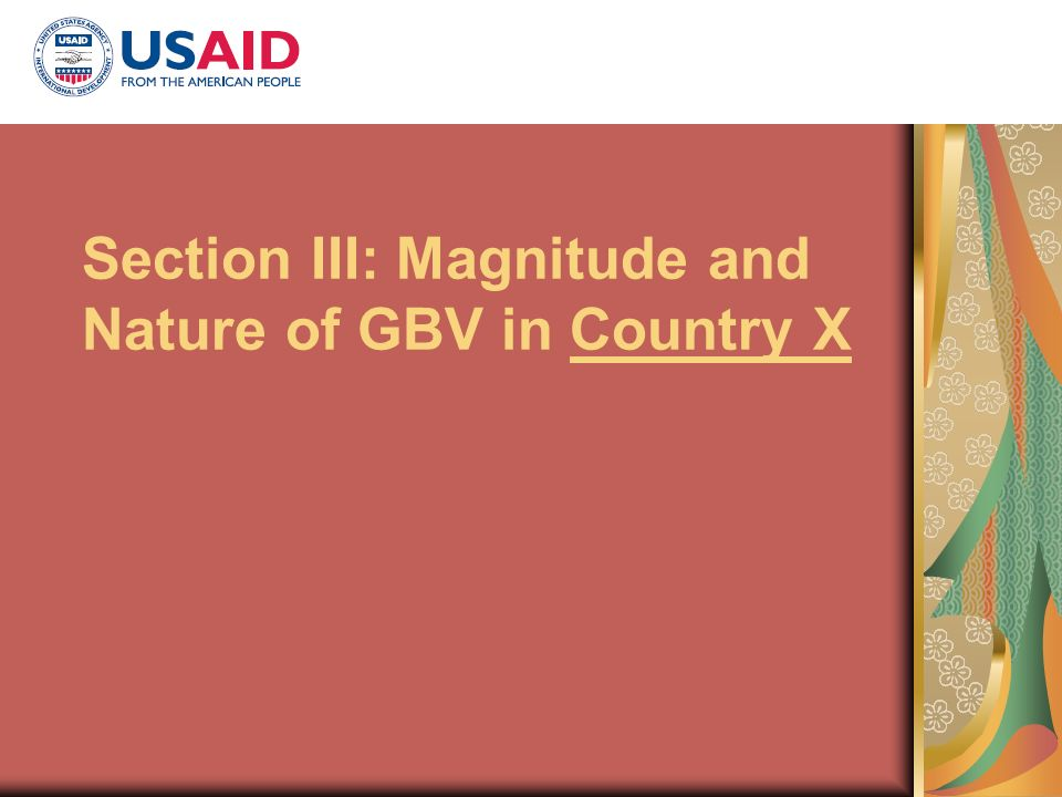 Section III: Magnitude and Nature of GBV in Country X
