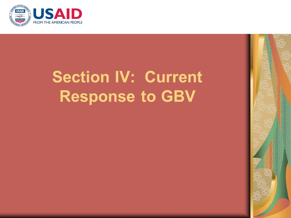 Section IV: Current Response to GBV
