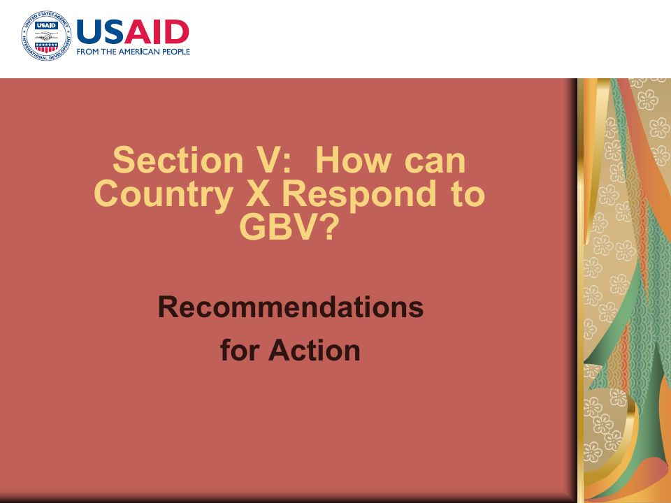 Section V: How can Country X Respond to GBV