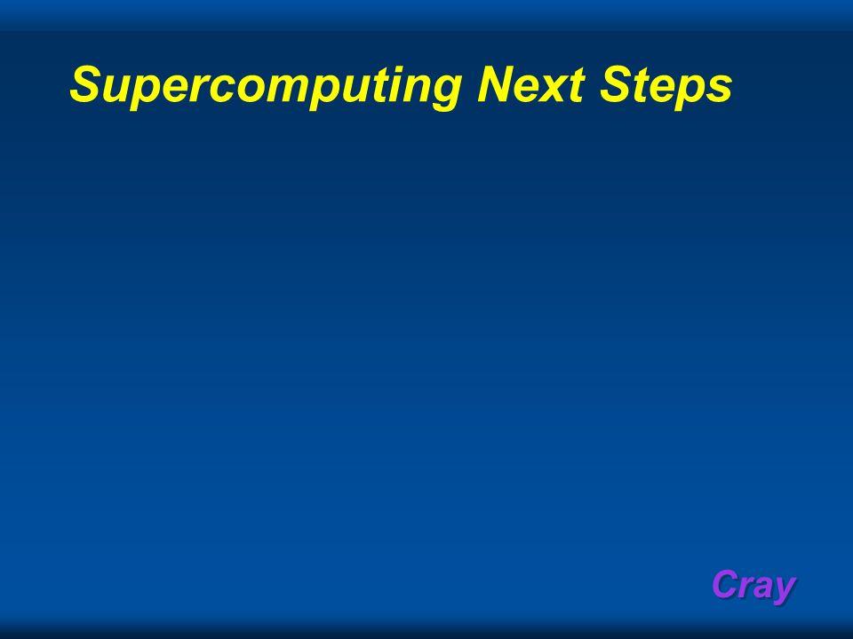 Supercomputing Next Steps