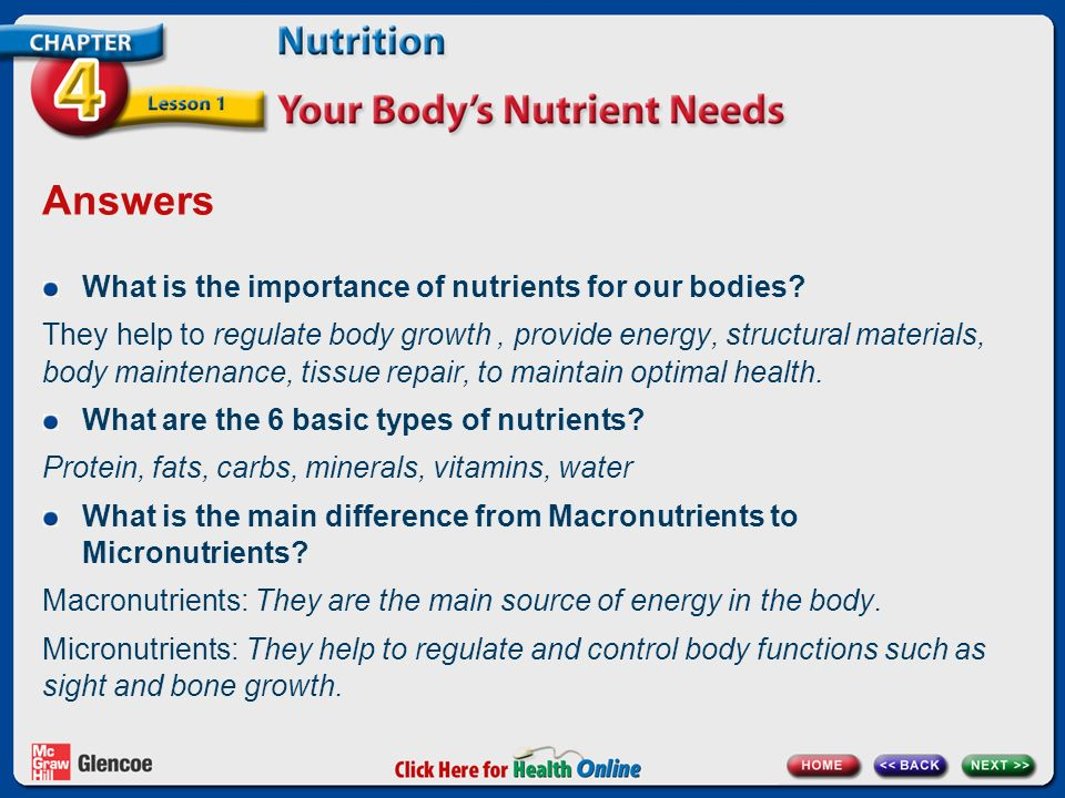 the six basic nutrients your body needs to stay healthy What is the basic nutrition chart that we should normally follow for a healthy micro nutrients your body needs to grow to stay active and maintain a healthy.