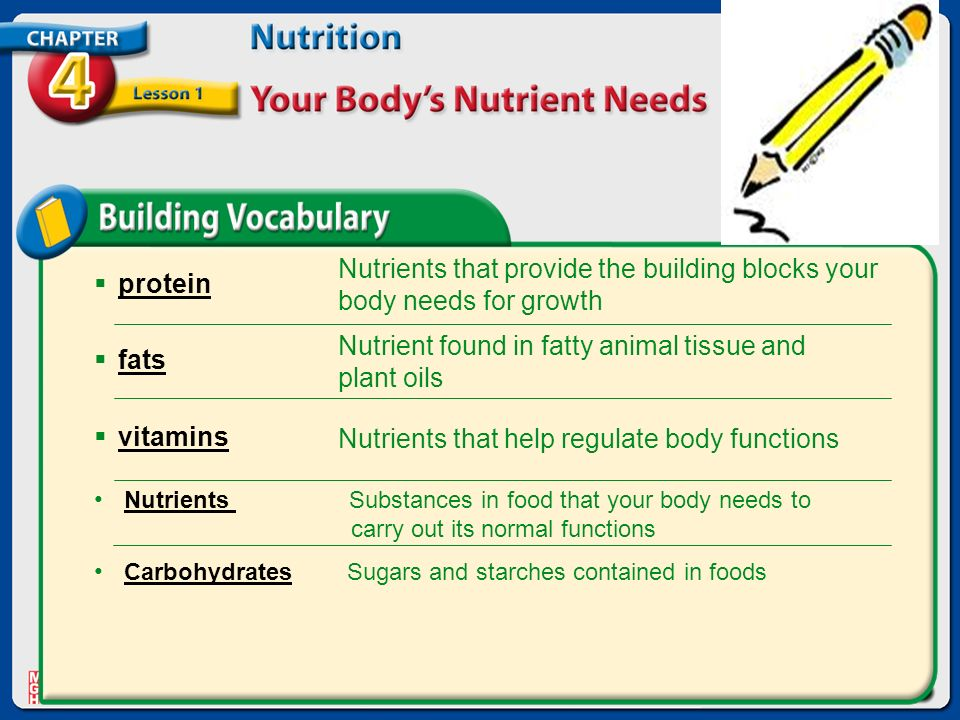 the four basic building blocks of nutrition that our body needs Most is in your body cells where it plays a vital part in reactions you could last for several weeks without food but only 4 or 5 days without water once the level in your blood and body fluids falls too low, water is drawn out from cells.
