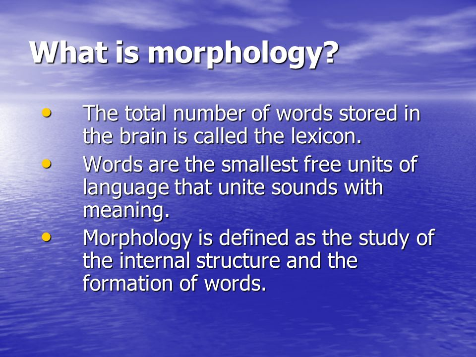 What is morphology The total number of words stored in the brain is called the lexicon.