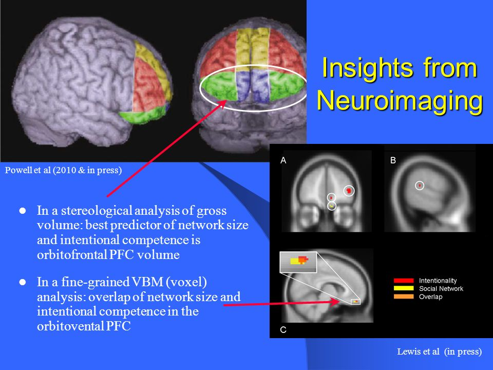 Insights from Neuroimaging