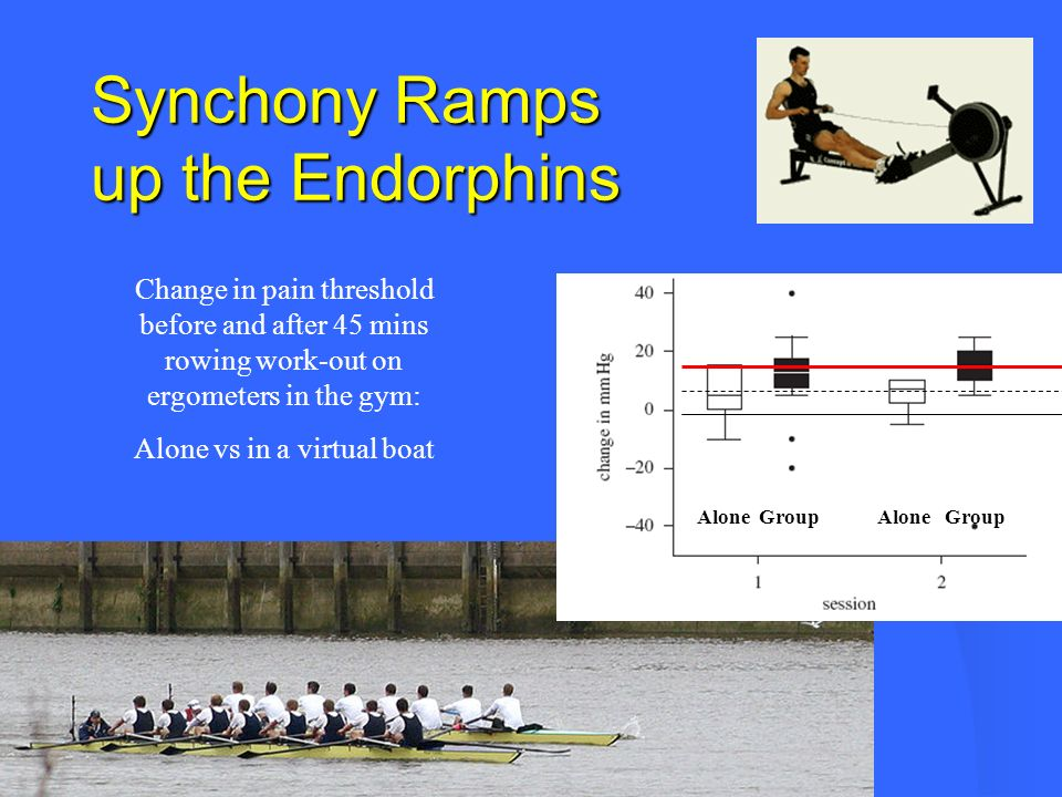 Synchony Ramps up the Endorphins