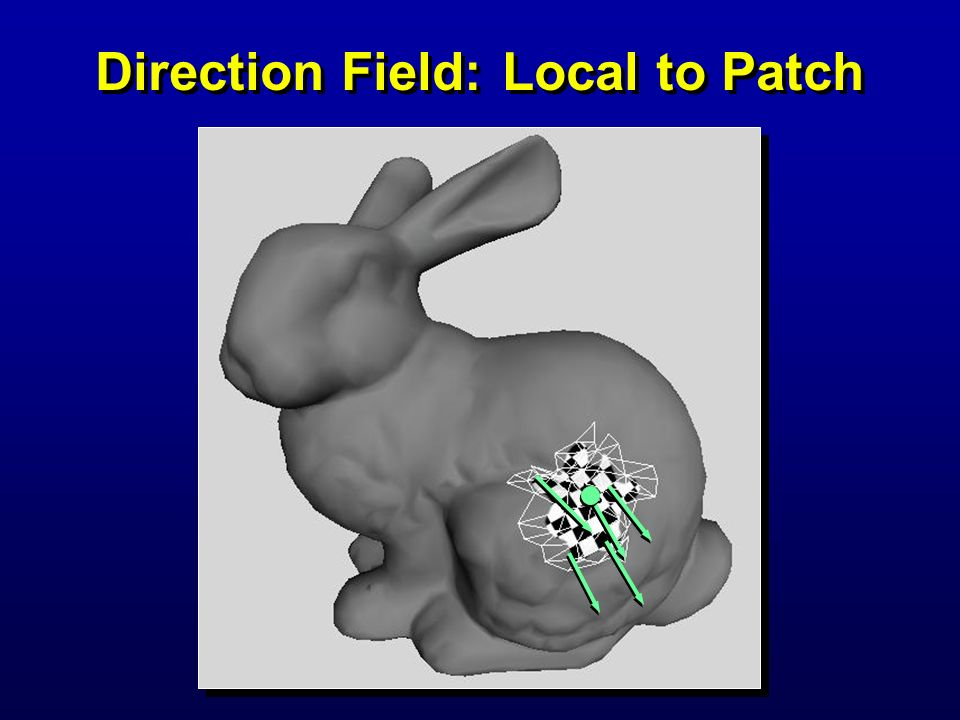 Direction Field: Local to Patch