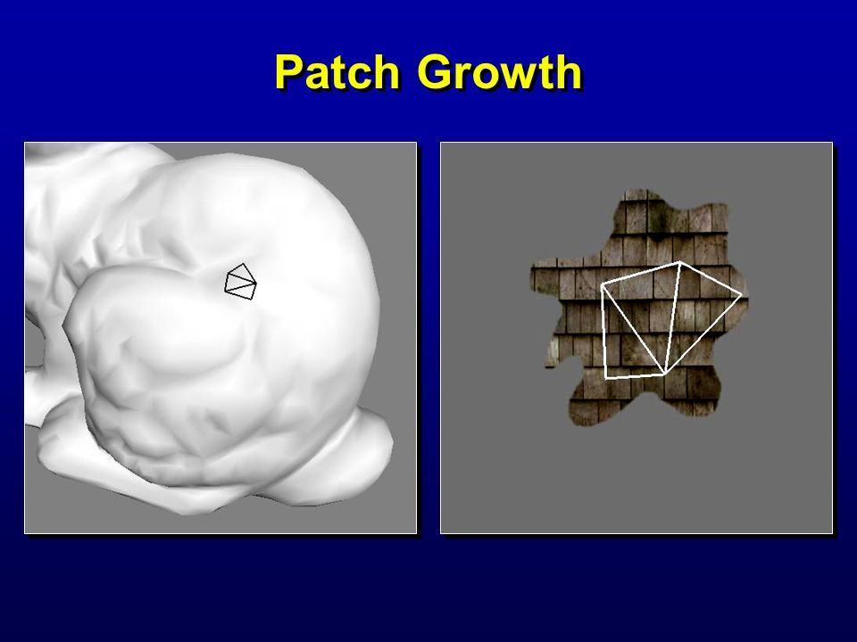 Patch Growth