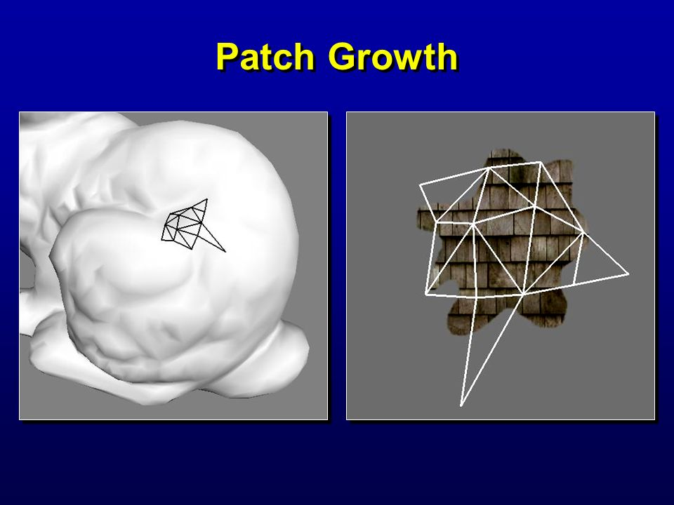 Lapped textures 2000/07/28 Patch Growth SIGGRAPH 2000