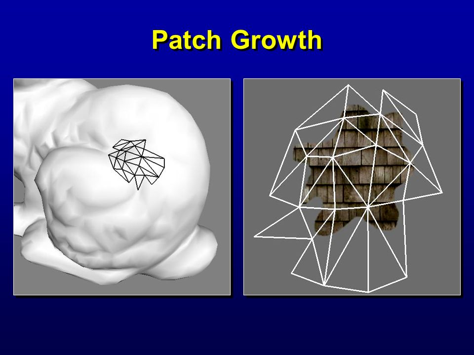 Patch Growth Lapped textures 2000/07/28