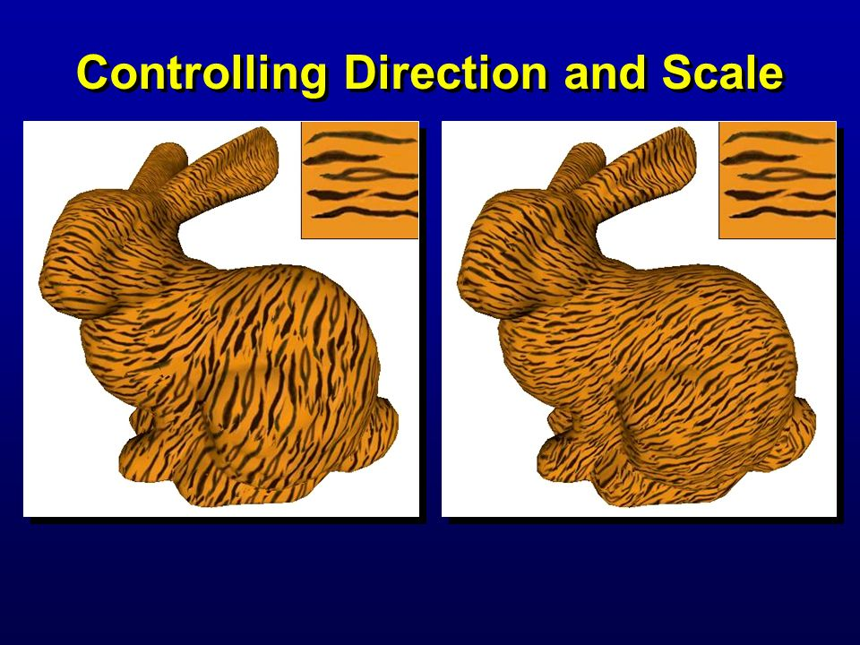 Controlling Direction and Scale