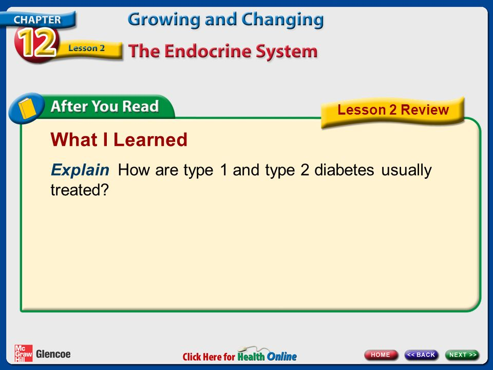 Lesson 2 Review What I Learned. Explain How are type 1 and type 2 diabetes usually treated