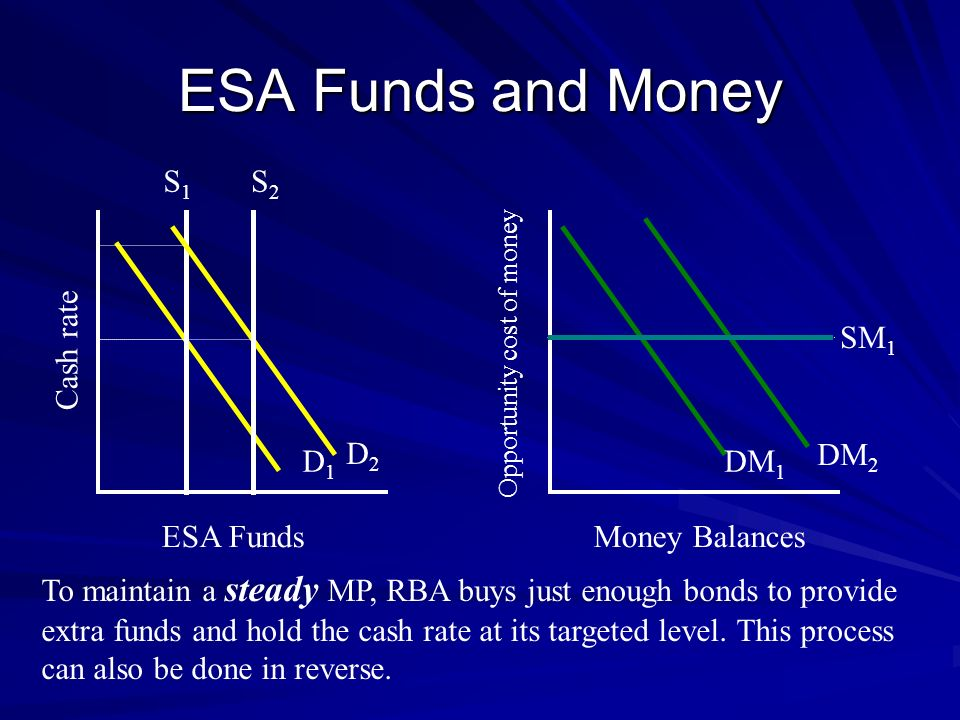 ESA Funds and Money S1 S2 Cash rate SM1 D2 DM2 D1 DM1 ESA Funds