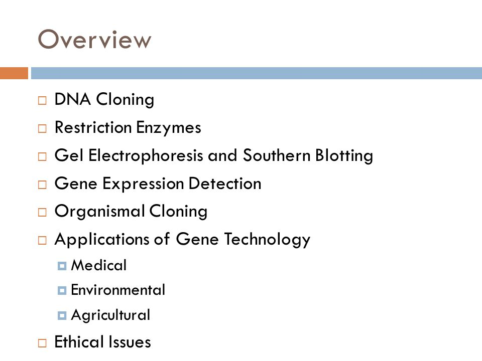 Overview DNA Cloning Restriction Enzymes